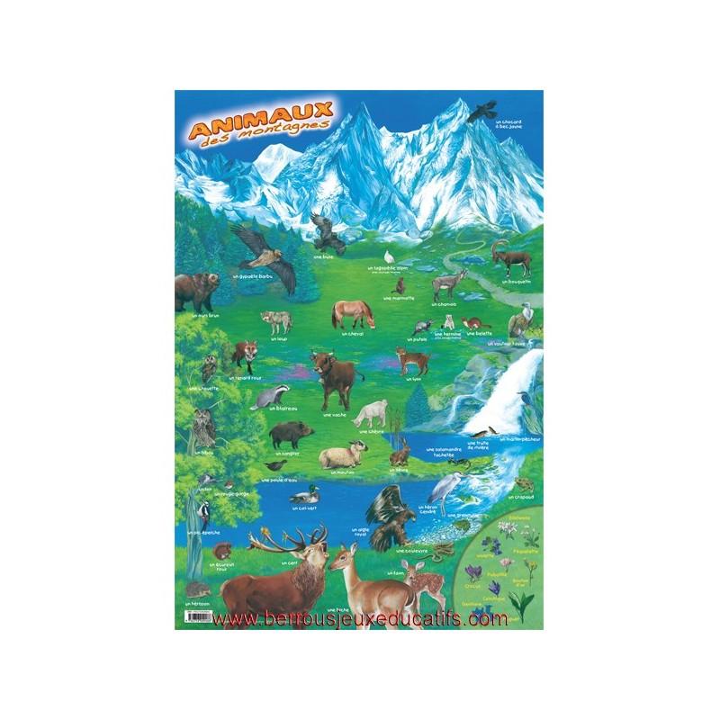 Poster éducatif Les animaux des montagnes