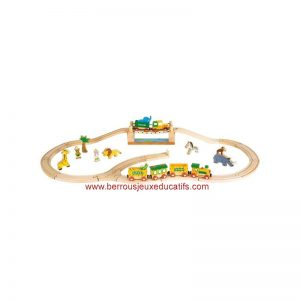 Coffret train safari